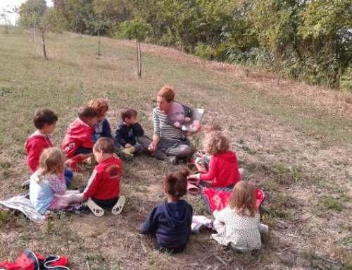 Corso di Pedagogia Pura Vida: strumenti per l'educazione in natura – Chiaravalle – Iscrizioni entro Gennaio 2020